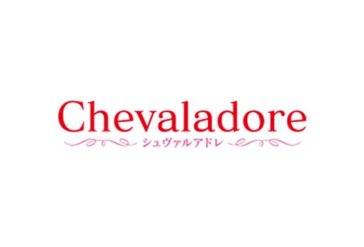 Chevaladore シュヴァルアドレ(ホースヘアバッグ)